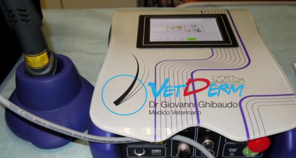 Laser terapeutico strumento